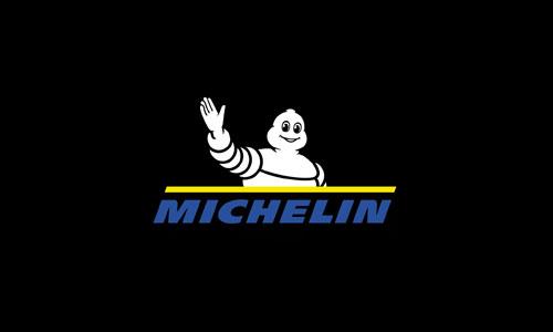 Интеграция 1С:Предприятие 8 с международной учетной системой компании «Michelin»